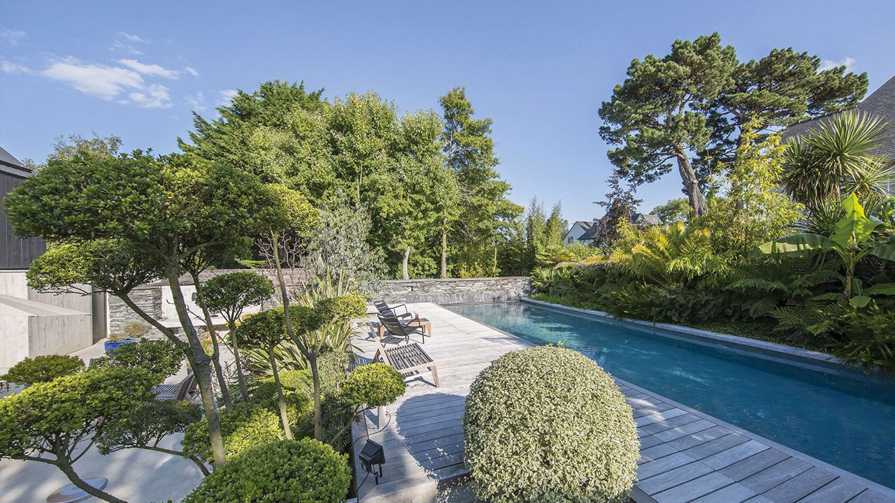 Ambiance tropicale piscine 1380 x 440 Piscine paysagée Gris anthracite