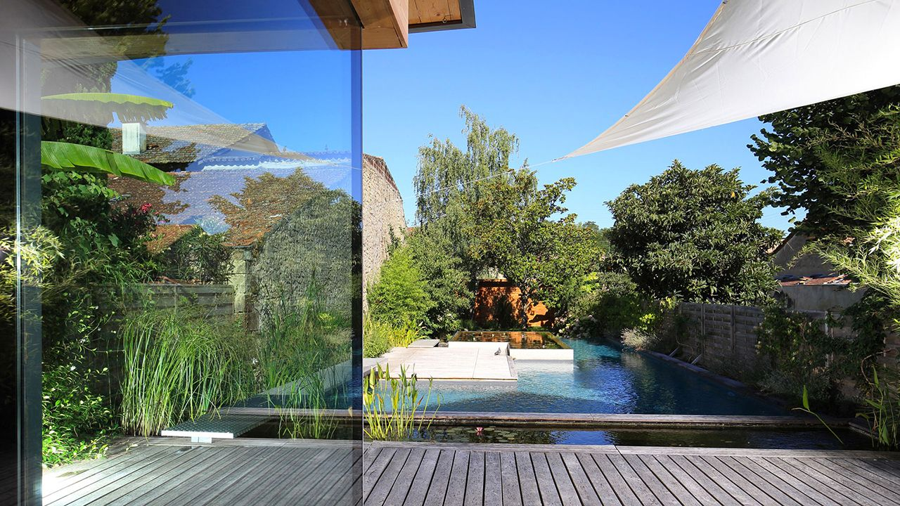 l'esprit nature piscine naturelle 10 Les tendances de piscine