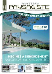 piscine a debordement