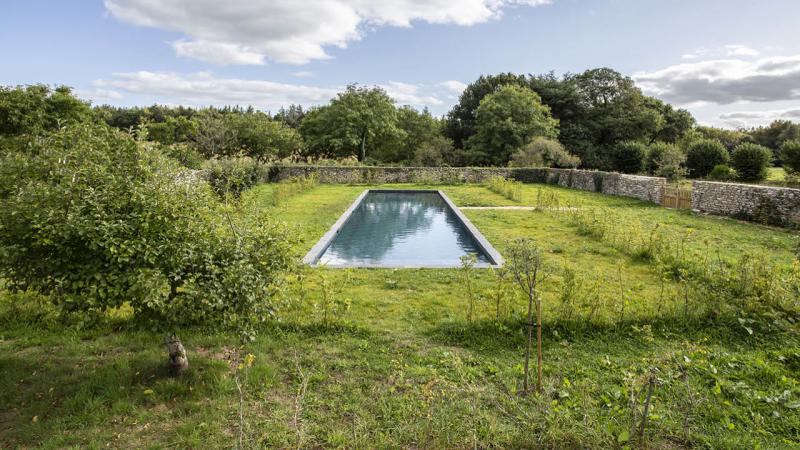 Nature brut piscine beton noir avec grand jardin naturel Couloir de nage 3D Gris ardoise
