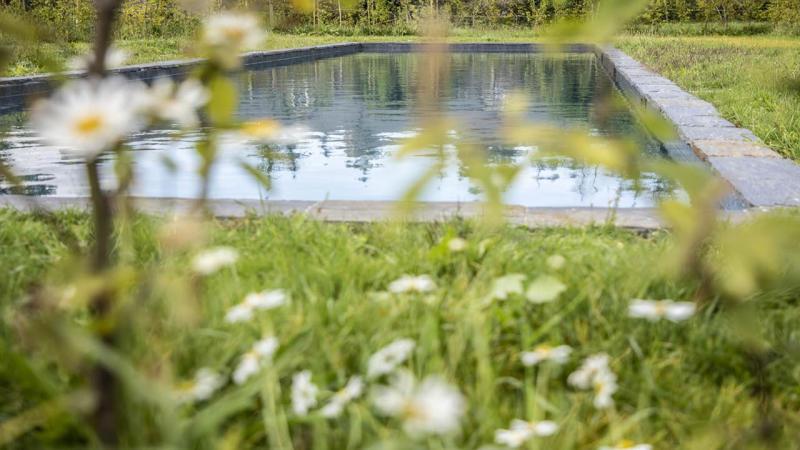 Nature brut piscine fleurs verdure Couloir de nage 3D Gris ardoise
