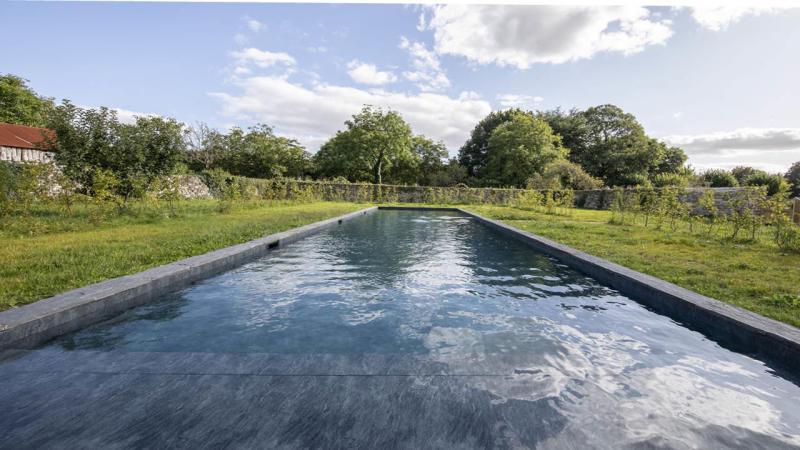Nature brut piscine noire avec grand jardin ardoise Couloir de nage 3D Gris ardoise